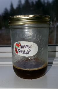 The results of the first rendering of my maple-birch syrup--tiny, but tasty and worth its weight in gold!