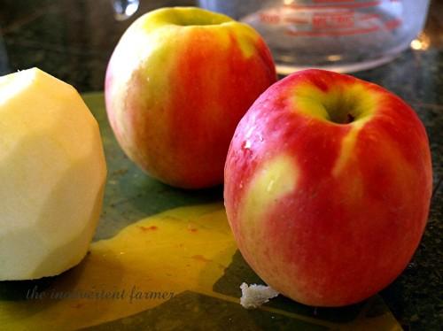rhubarb apple1