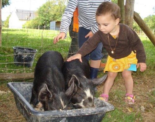 Alice et Camille avec les cochons