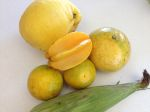 Florida local: corn, citrus, star fruit