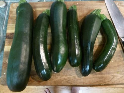 Look! Zucchini