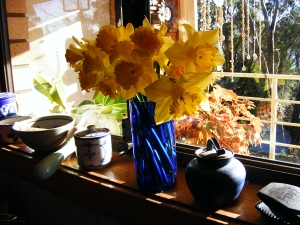 I love daffodils, they are the first sign of spring on Serendipity Farm and are out all over the place at the moment