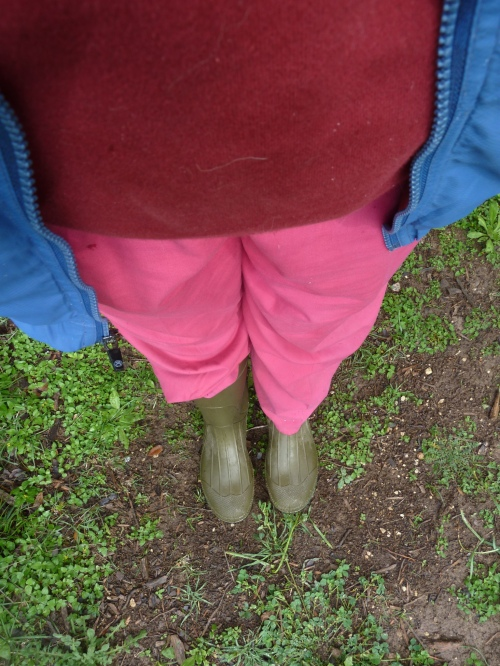 hot pink pants (great garden pans!) and very comfortable maroon sweatshirt
