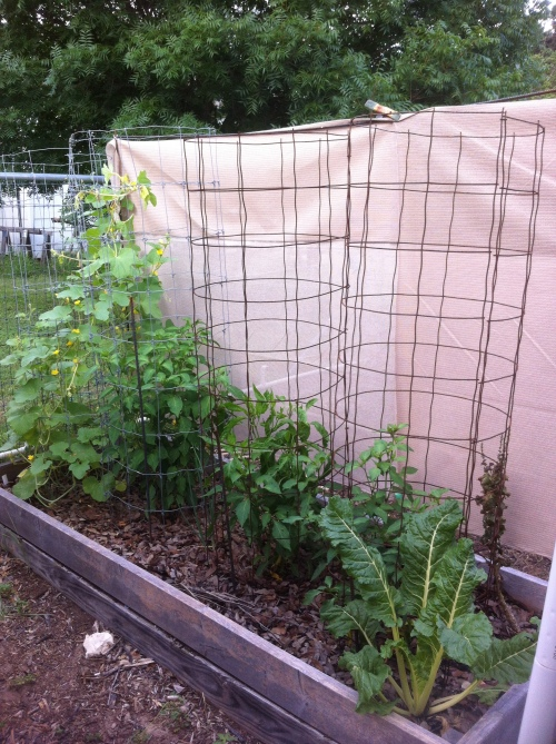 Shade Cloth with rebar